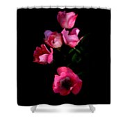 Pink And White Flowers On Black Shower Curtain