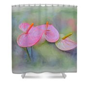Pink Anthurium Shower Curtain