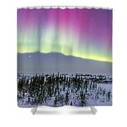 Pink Aurora Over Boreal Forest Shower Curtain