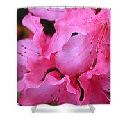Pink Azalea Drama Shower Curtain