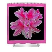 Pink Azaleas Shower Curtain