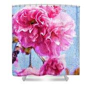 Pink Bellos Shower Curtain