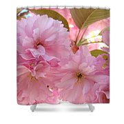 Pink Blossoms Art Prints Spring Tree Blossoms Baslee Troutman Shower Curtain