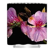 Pink Blush Cranesbill Shower Curtain