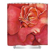 Pink Blush Shower Curtain