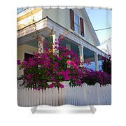 Pink Bougainvilleas Shower Curtain