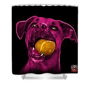 Pink Boxer Mix Dog Art - 8173 - Wb Shower Curtain