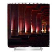 Pink Bridge  Shower Curtain