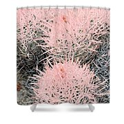 Pink Cactus Shower Curtain