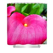 Pink Calla Lily Macro Flower Art Print Lilies Baslee Troutman Shower Curtain
