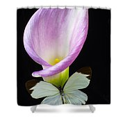 Pink Calla Lily With White Butterfly Shower Curtain