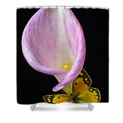 Pink Calla Lily With Yellow Butterfly Shower Curtain