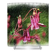 Pink Columbines Shower Curtain