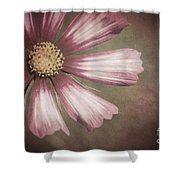 Pink Cosmos Painting Shower Curtain