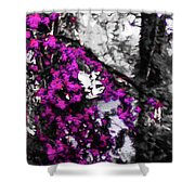 Pink Crape Myrtles Abstract Shower Curtain