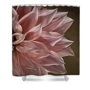 Pink Dahlia In Bloom Shower Curtain