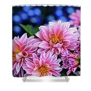 Pink Dahlias On Lobelia Shower Curtain