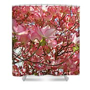 Pink Dogwood Flowering Tree Art Prints Canvas Baslee Troutman Shower Curtain