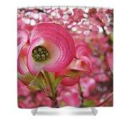 Pink Dogwood Tree Flowers Dogwood Flowers Giclee Art Prints Baslee Troutman Shower Curtain