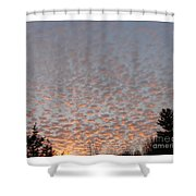 Pink Dotted Sky Shower Curtain