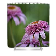 Pink Double Delight Shower Curtain