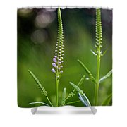 Pink Dragon Flowers Shower Curtain