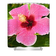 Pink Droplets Shower Curtain