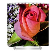 Pink Eye Rose Shower Curtain