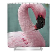 Pink Flamingo Profile 2 Shower Curtain