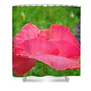 Pink Floral Flower Art Print Green Meadow Baslee Troutman Shower Curtain