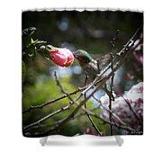 Pink Flower Hummie Shower Curtain