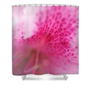Pink Flower Shower Curtain