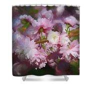 Pink Flowering Almond Shower Curtain
