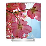Pink Flowering Dogwood Tree Art Prints Blue Sky Baslee Troutman Shower Curtain