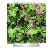 Pink Flowering Vine1 Shower Curtain