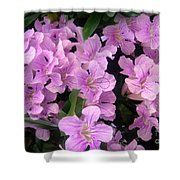 Pink Flowers. 6-22-17 Shower Curtain