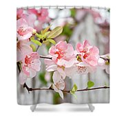 Pink Flowers And A White Picket Fence Shower Curtain