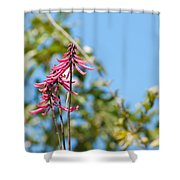 Pink Flowers At Coba Shower Curtain