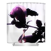 Pink Flowers In Empty Space Shower Curtain