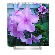 Pink Flowers In The Garden Shower Curtain