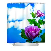 Pink Flowers On A Blue Sky Shower Curtain