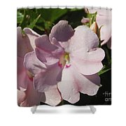 Pink Flowers P79 Shower Curtain