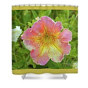 Pink Flowers P80 Shower Curtain