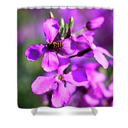 Pink Flowers With Bee . 40d4803 Shower Curtain