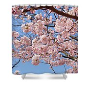 Pink Fluffy Branches Shower Curtain