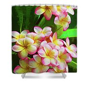 Pink Frangipani Shower Curtain