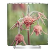 Pink Fuzz 2 Shower Curtain