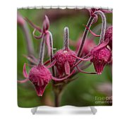 Pink Fuzz 3 - Square Shower Curtain