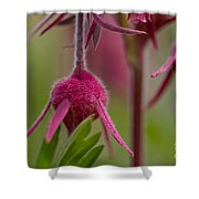 Pink Fuzz 6 Shower Curtain