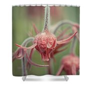 Pink Fuzz 7 Shower Curtain